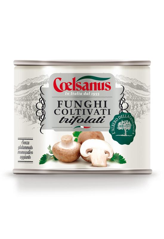 Funghi Coltivati Trifolati
